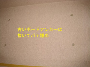 Img_0864tc