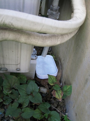 ドレン排水テスト