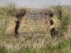 芝に埋まった室外機を撤去した